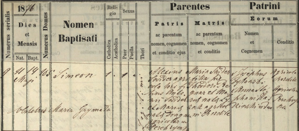 1876 Simon Swedish birth registration