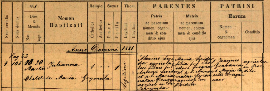 1881 Julia Swider birth registration