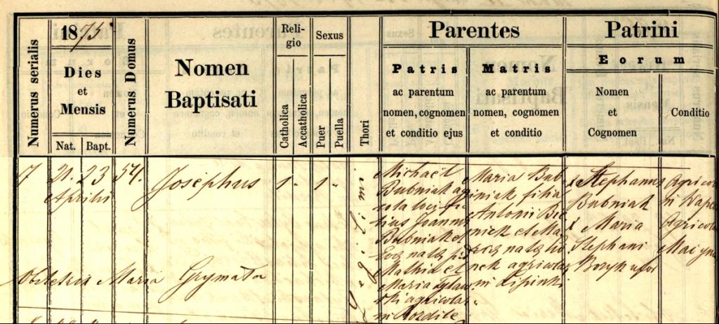 Josephus Bubniak birth registration
