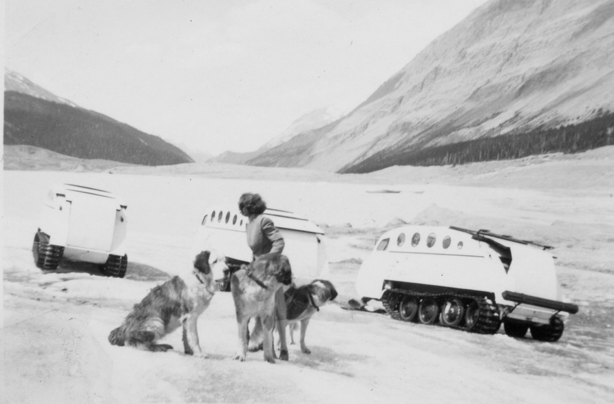 Kathleen and dogs cool off on the glacier